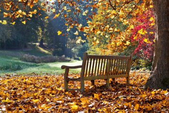 Autumn Statement 2015 Summary
